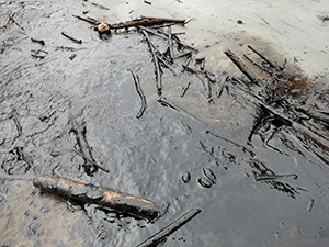 The Aguarico River after the oil spill